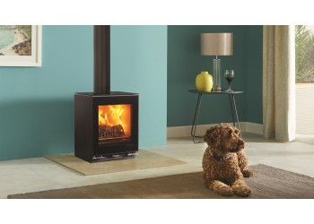 Vision Small Wood Burning Stove and Multifuel Stove